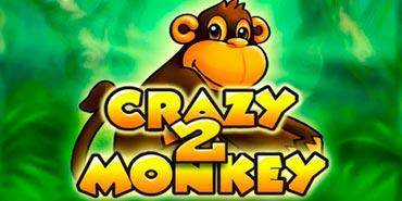 CrazyMonkey2